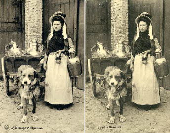 Flemish_Milkwoman_with_dog_cart